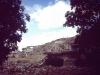 gomurgen-1990_3