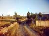 gomurgen-1992_13