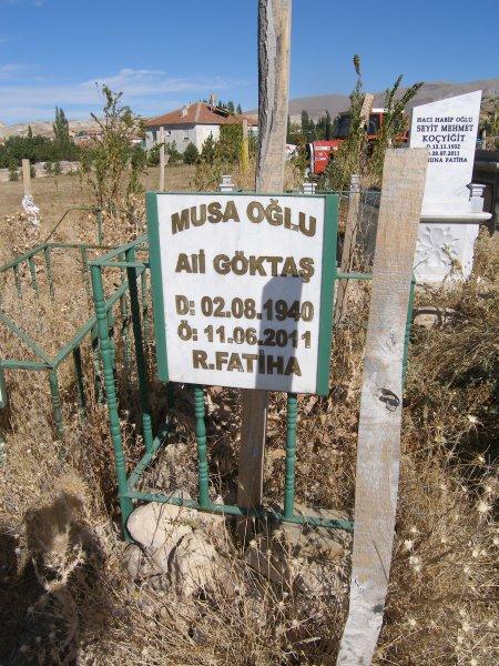 Ali Göktas