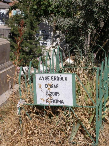 Ayse Eroglu