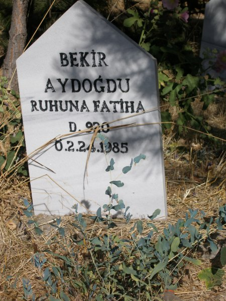 Bekir Aydogdu