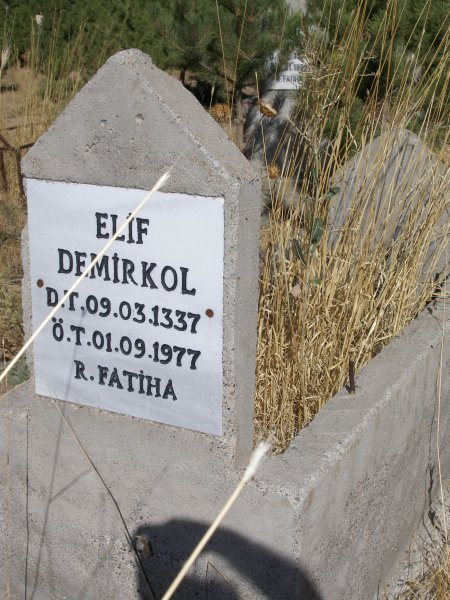 Elif Demirkol