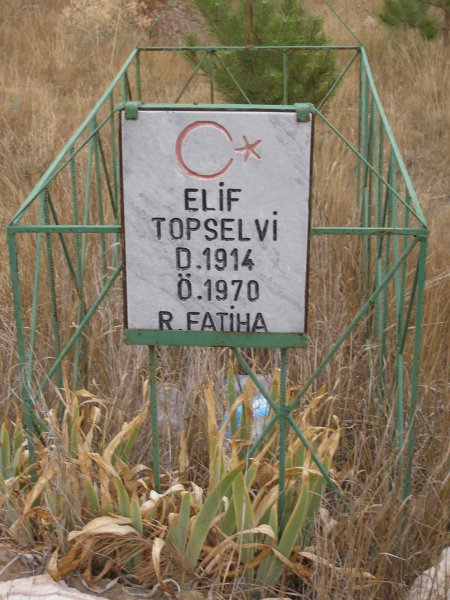 Elif Topselvi