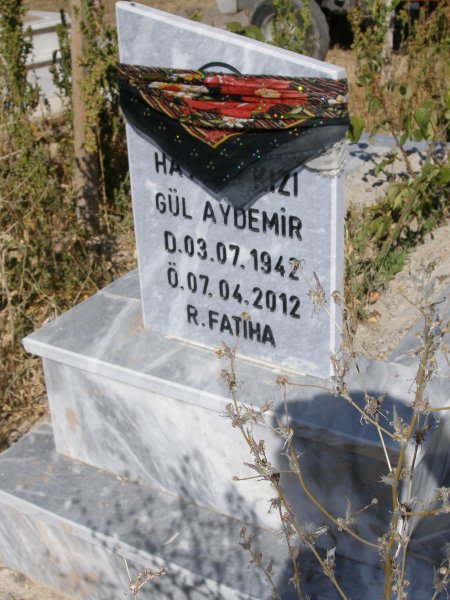 Gül Aydemir
