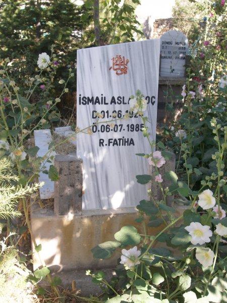 Ismail Aslankoc