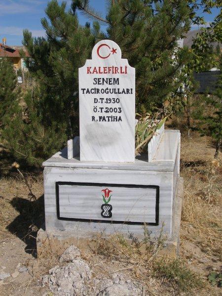 Senem Tacirogullari