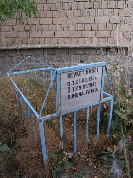 Sevket Basci