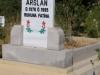 mer Arslan