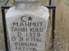 Mahmut Tanrikulu